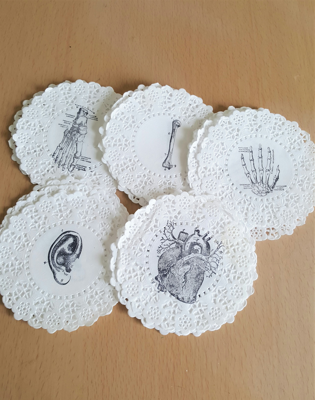 Halloween Skeleton Body Parts Doilies x 25