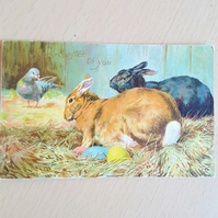 Antique Easter Postcard Bunnies and Eggs