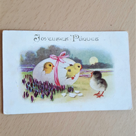 Vintage Easter Postcard Chicks and Eggs Joyeuses Paques