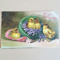 Antique Easter Postcard Bunnies and Easter Bonnet An Easter Greeting