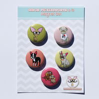 Chihuahua Magnet Set With Pug, Boston Terrier, Frenchbulldog & Dachshund