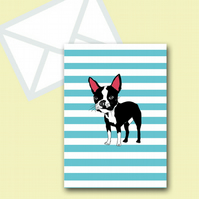 Boston Terrier Blank Greeting Card Stripped With Envelope