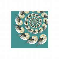 Nautilus spiral illustration, giclee print. Sea themed art. Nautical drawing