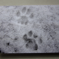 Paw Prints Christmas Card