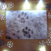 Snowy Cat Paw Prints Christmas Card