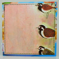 SALE Vintage Book (1969) Birds Card, One-Of-A-Kind