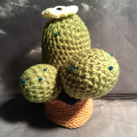 Crocheted cactus knitted pin cushion