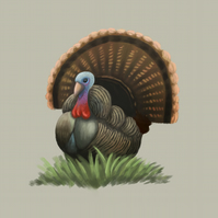 'Thanksgiving Turkey' limited edition signed print