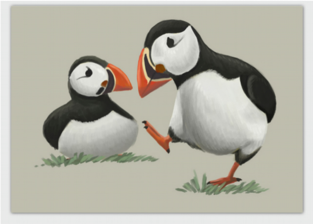 Puffins blank greeting card