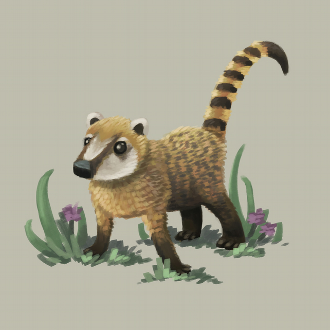 'Coati' limited edition signed print