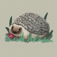 Hedgehog with an apple limited edition print