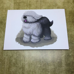 Old English Sheepdog blank greeting card