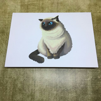 Himalayan Cat blank greeting card