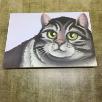 Tabby Cat blank greeting card