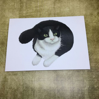 Black and White Cat blank greeting card