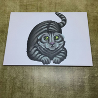 Scotish Fold Cat blank greeting card