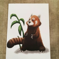 Red Panda blank greeting card