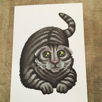 Scottish Fold Cat blank greeting card