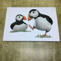 Puffins blank greeting card and mini badge