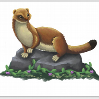Stoat blank greeting card
