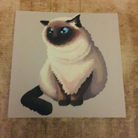 Himalayan Cat square post card