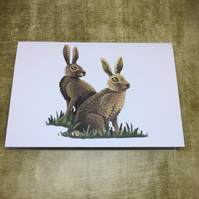 Hares Blank Greeting Card