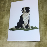 Border Collie Dog blank greeting card