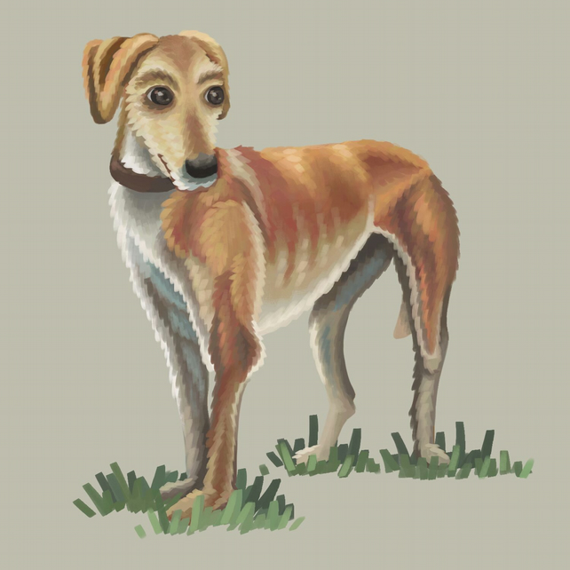 Lurcher digital art print