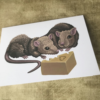 Rats Blank Greeting Card