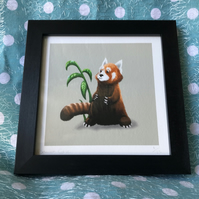 'Red Panda' limited edition signed print
