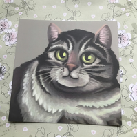 Tabby Cat square post card