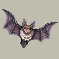 Flying Bat Limited Edition Art Print