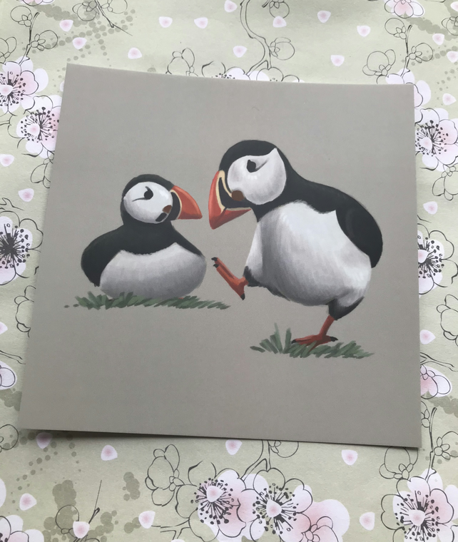 Puffins square post card