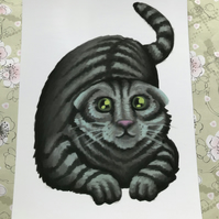 Scottish Fold Cat post card