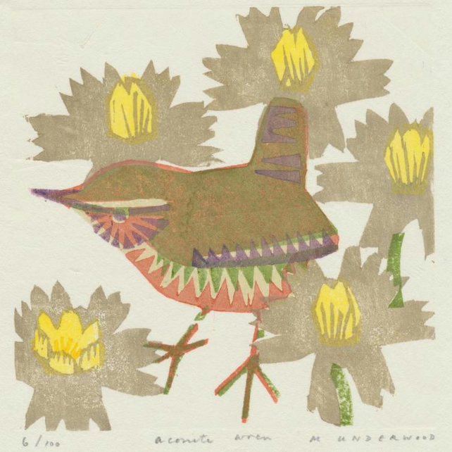 Aconite wren by Matt Underwood