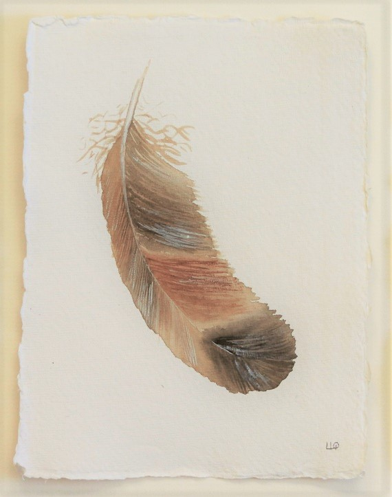 Feather study original watercolour illustration painting 6x8 picture unframed