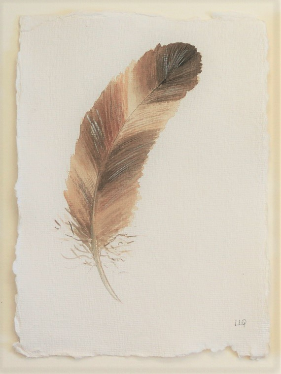 Brown feather watercolour original illustration painting study
