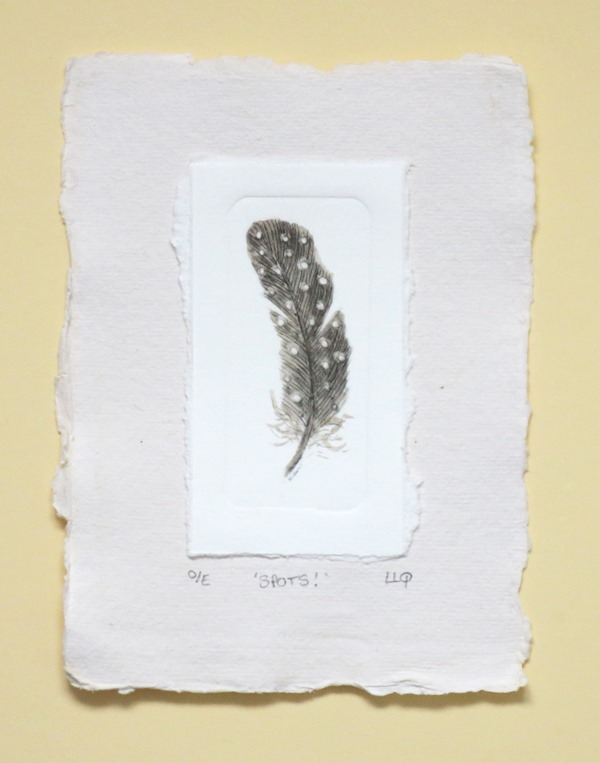 Guinea fowl feather spotty feather in sepia an original drypoint print miniature