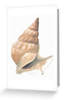 Blank greetings card from a shell study in watercolour