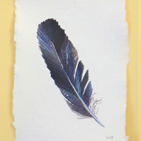 watercolour crow feather original painting illustration