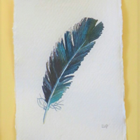 Original crow feather watercolour painting illustration picture