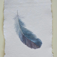 Grey feather original watercolour illustration painting - feather art