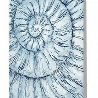 ammonite blank greeting card notelet notecard fossil spiral