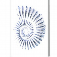 Blank art greeting card ammonite spiral note card notelet