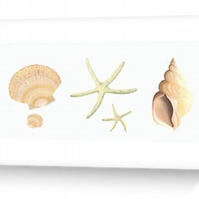 blank greeting card sea shells beach wedding, birthday, notecard, notelet