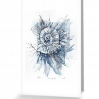 Blank greeting card notelet art card no.100 from the ammonites etching project