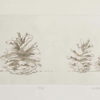 Original drypoint etching three pinecones still life study autumnal print