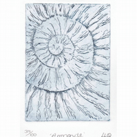 Etching no.37 of an ammonite fossil in an edition of 100