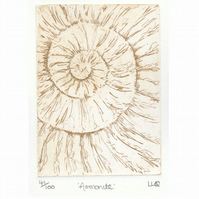 Etching no.41 of an ammonite fossil in an edition of 100