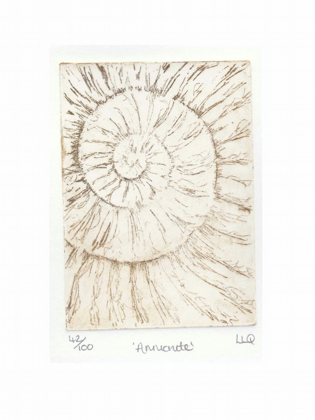 Etching no.42 of an ammonite fossil in an edition of 100
